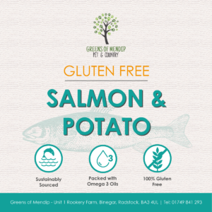 Gluten Free Salmon and Potato