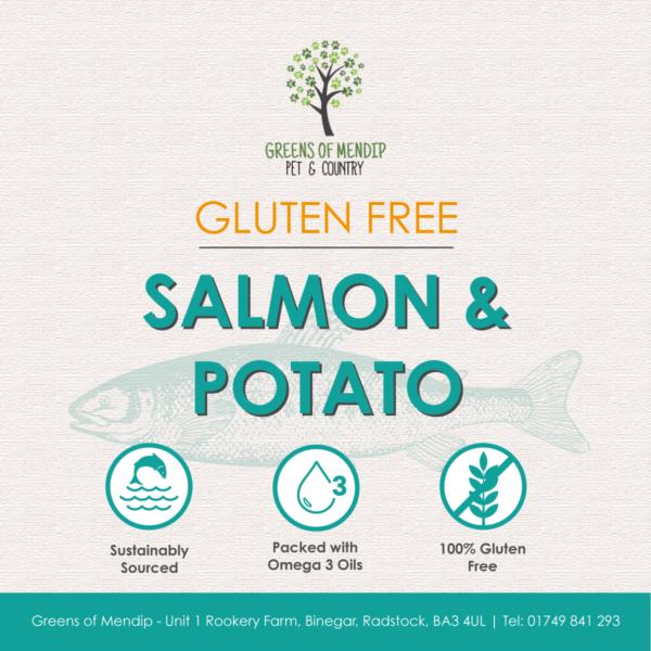 Gluten Free Salmon and Potato