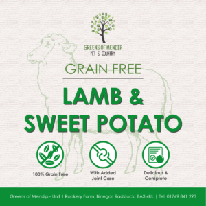 Grain Free Lamb and Sweet Potato