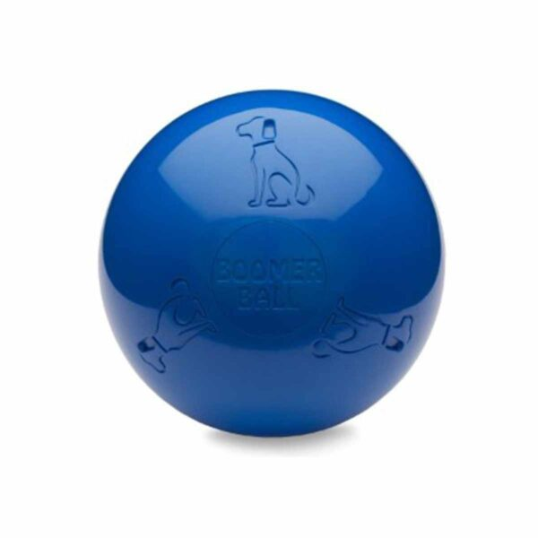 Blue Boomer Ball